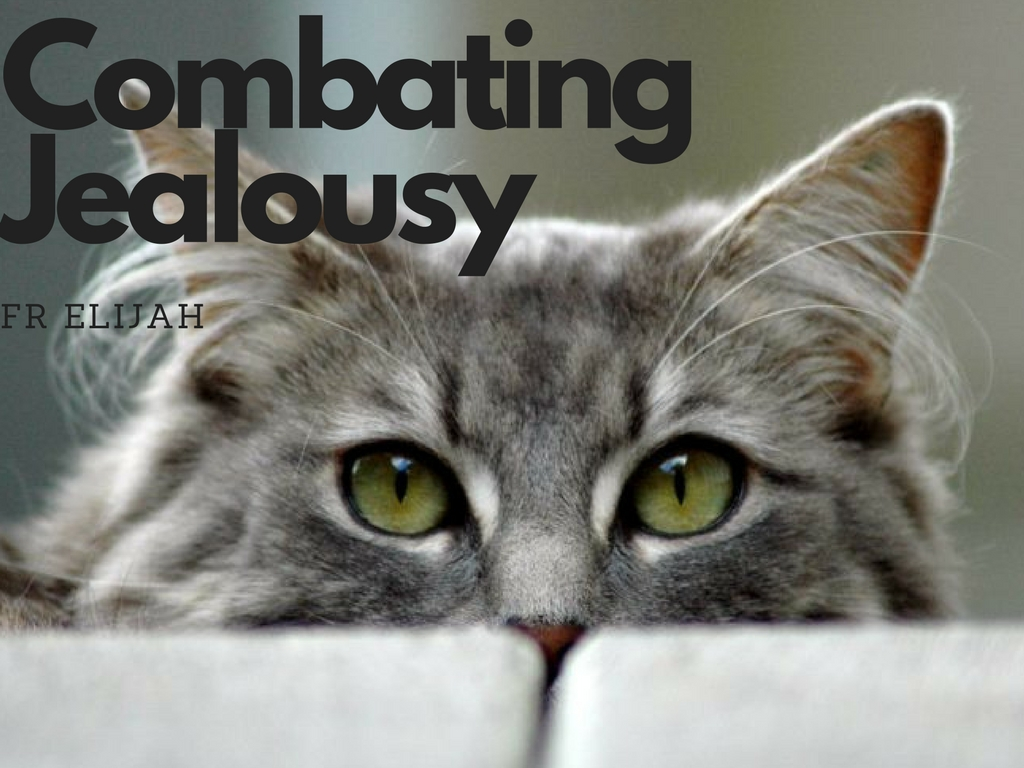 Combating Jealousy